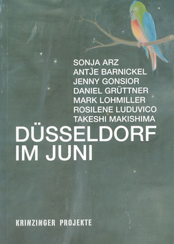 Duesseldorf im Juni (Ausstellungs-Katalog Krinzinger Projekte) 2006.