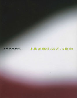 Schlegel (Eva Schlegel - Stills at the back of the brain) 2009.