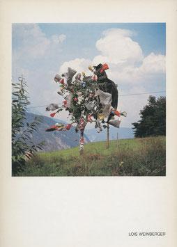 Weinberger (Lois Weinberger - Skulpturen) 1983.