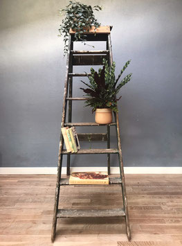 Hoge houten ladder