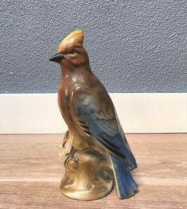 Vogel beeld