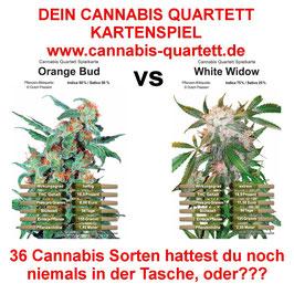 Dein Cannabis Quartett Kartenspiel