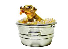 Lauder Estée - Puppy in a Tub
