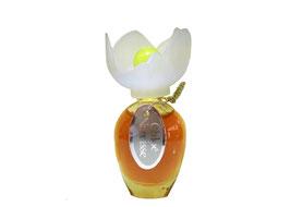 Chloé - Narcisse