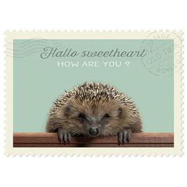 Postkarte Hallo sweetheart