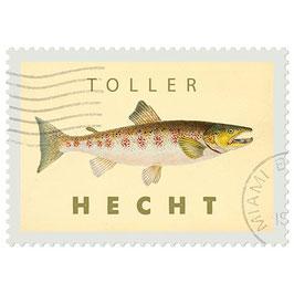 Postkarte Toller Hecht