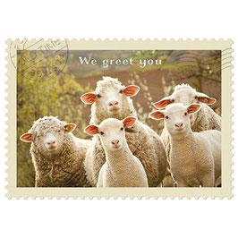 Postkarte We greet you