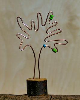 KH Baum H1