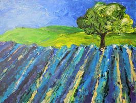 """Landschaft """"Provence"""""""