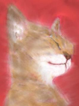 猫の絵8枚セット