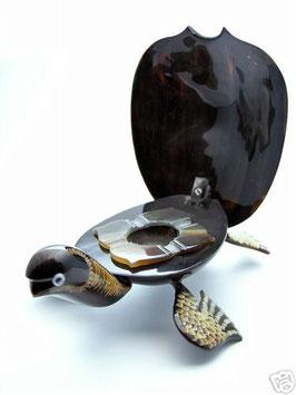 Schildkröte BABA