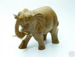 Elefant VOI