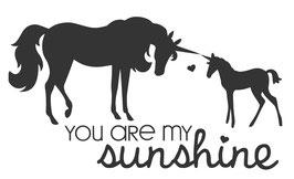 Einhörner - Sunshine