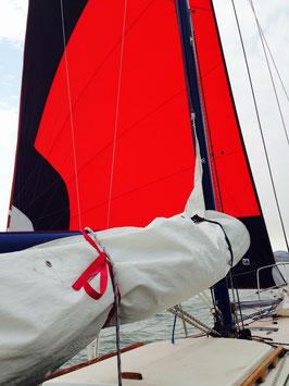 "Catalina 27 Tall Rig: ""The Generator"""