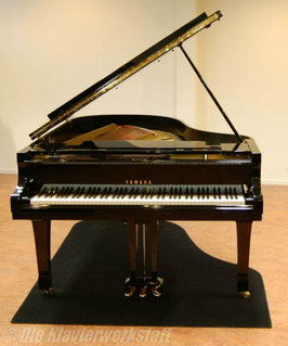 Pianocarpet, Flügel bis 145 cm Länge