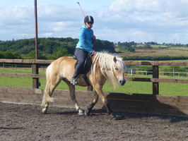 Pony Club Games 5 day camp Course price £550. Deposit of £250 due when booking