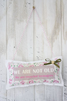 Motiv - Schild - We are not old we are recyled Teenager