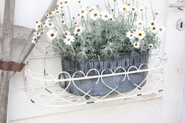 Shabby chic Eisen Blumenwandkorb weiß
