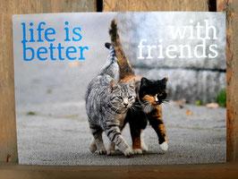 Zintenz kaartje friends