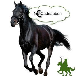 Nieuw Eldorado cadeaubon