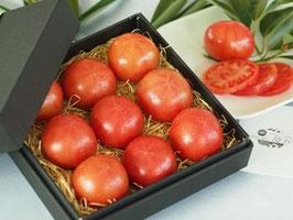 kitachi ROSSO 化粧箱入り 0.6kg/塩熟トマト/トマト