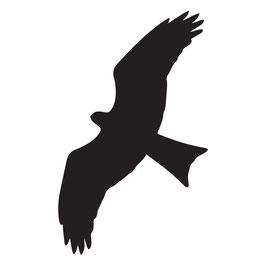 Aufkleber - Warnvogel für Fenster und Glastüren (5 Stück)