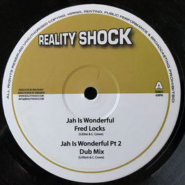 "FRED LOCKS - Jah is Wonderful (Reality Shock 10"")"