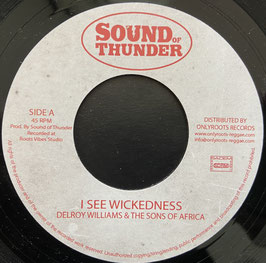 "DELROY WILLIAMS - I See Wickedness (Sound of Thunder 7"")"