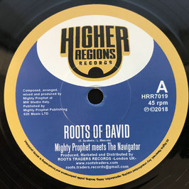 "Mighty Prophet meets The Navigator - Roots of David (Higher Regions 7"")"