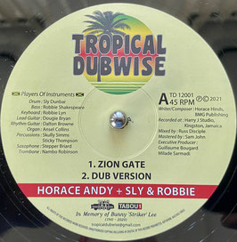 """HORACE ANDY - Zion Gate (Tropical Dubwise 12"""")"""