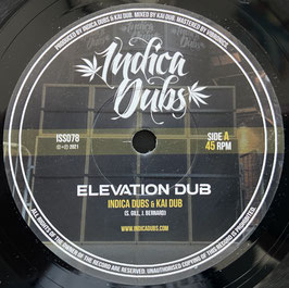 "INDICA DUBS & KAI DUB - Elevation Dub (Indica Dubs 7"")"