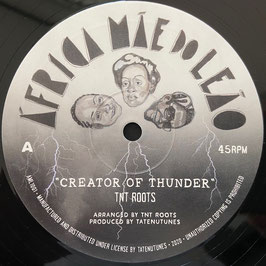 "TNT ROOTS - Creator Of Thunder (Africa Mae Do Leao 10"")"