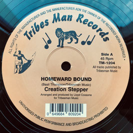 "CREATION STEPPER - Homeward Bound (Tribes Man 12"")"
