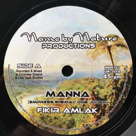 "FIKIR AMLAK - Manna (Name by Nature 7"")"