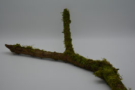 Holzäste bewachsen mit Moos 2 Stk