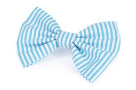 "hundestrand, Hundefliege ""Sailor"",  blau-weiß gestreift"