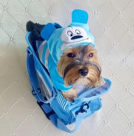 Hundetasche Blau
