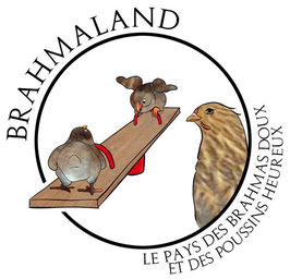 Commande Bernard B.