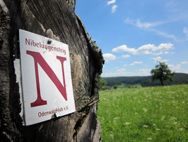 Nibelungensteig Variationen