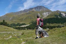 Südtirol - Hundewandern im Alpenland