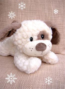 Süßer Schmusehund mit keckem Blick