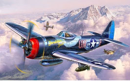 Model Set P-47M-Thunderbolt