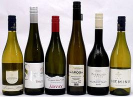 Weinpaket Spargelzeit