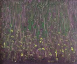 Waldboden 1