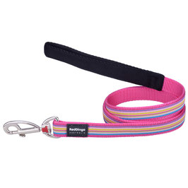 Red Dingo Dog Lead Stripe Hot Pink