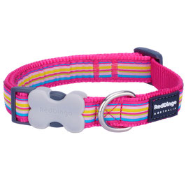 Red Dingo Dog/Puppy Collar Stripe Hot Pink