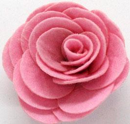 rosa aperta-col 08