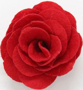 rosa aperta-col 53