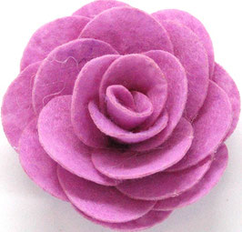 rosa aperta-col 10