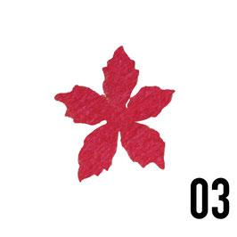 stella alpina grande-conf. 3 pz